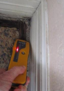 Mold Inspection Moisture Meter